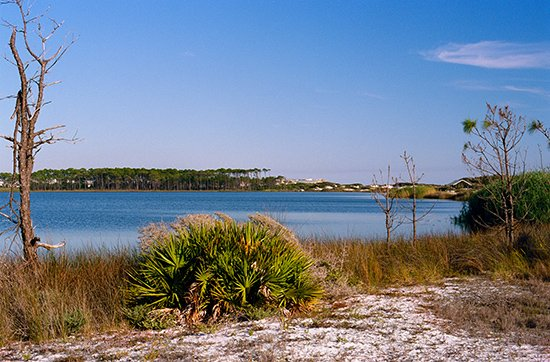 30A Luxury Homes - A lot of recreational activities along these Coastal Dune Lakes