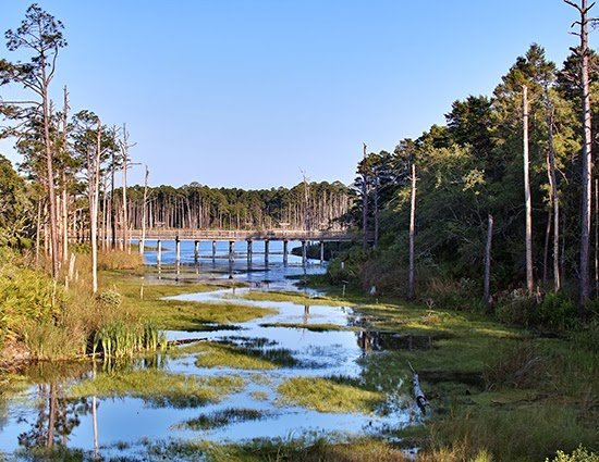 Coastal Dune Lakes - A very unique geographical feature that can only be found in Australia, Madagascar, Oregon, New Zealand and of course, in Walton County.