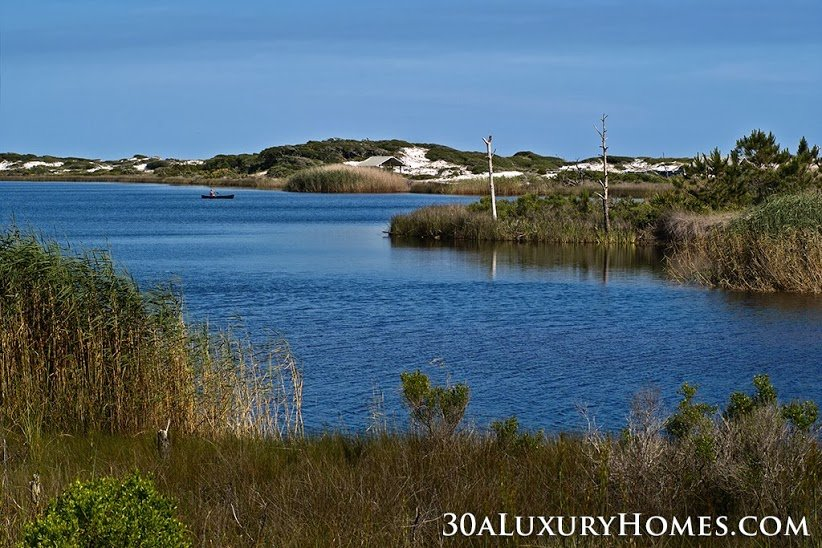 Grayton Beach's wealth of nature within its expanse awaits your discovery!